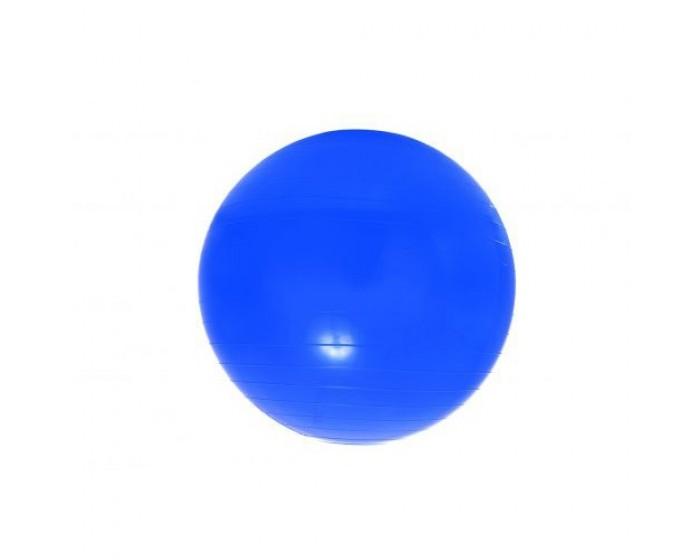 Bola Bobath em Plástico 70cm